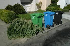 Christmas Trees In The Curb Tree Trash Bag