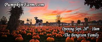 Pumpkin Patch Caledonia Il For Sale by Don U0027t Miss These 10 Great Pumpkin Patches In Illinois