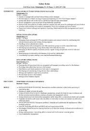 Download Operations Singapore Resume Sample As Image File