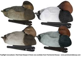 Picture Of HOLIDAY SALE Topflight Canvasback Red Head Sleeper Duck Decoy