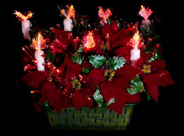 Fiber Optic Christmas Tree Color Wheel Replacement by Vintage Fiber Optic Poinsettia Basket Youtube