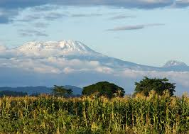 The Highest Mountain In Africa Snow Capped Mount Kilimanjaro