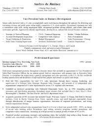 Small Business Owner Resume Samples Lovely Examples With