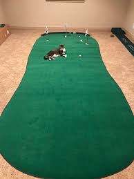 Wife agreed to a little indoor putting green cat for scale golf