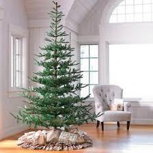 Un Lit Noblis Fir Christmas Tree