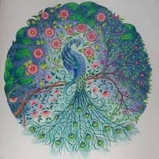 658 Best Secret Garden Images On Pinterest