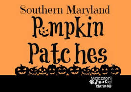 Frederick Maryland Pumpkin Patch by Southern Maryland Pumpkin Patches Macaroni Kid