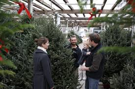 Longest Lasting Artificial Christmas Tree by Long Island U0027s Largest Christmas Store Holiday Decorations Trees