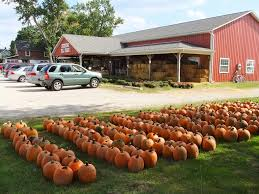 Shawns Pumpkin Patch Hours by Pickering Hill Farms In Avon Offers Wagon Rides And Pumpkin