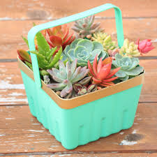 34 Creative DIY Planters You Will Simply Adore