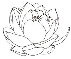 Lotus Flower Is A Symbol Of The Sun Colouring Page