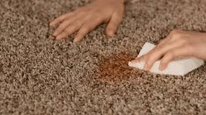 Remove Blood Stain From Carpet by Carpet Stain Removal What Not To Do