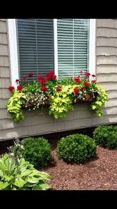 Part Sun Shade Window Box Flowers