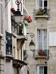 Paris Flowers And Street Image