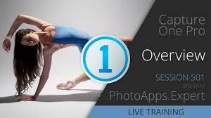 Capture One Pro 11 Coupon, Butler And Hill Discount Code