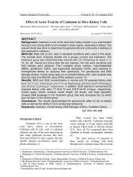 100 Itai Itai Itai 4 Jurnal Ginjal Mencit Cadmium Antioxidant