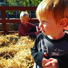 Pumpkin Patch Half Moon Bay 2017 by 40 Kid Friendly Events In San Francisco Not To Miss In October