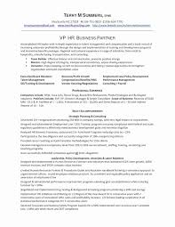 Relationship Manager Resume Doc Lovely Security Samples New Hr Sample Business Of