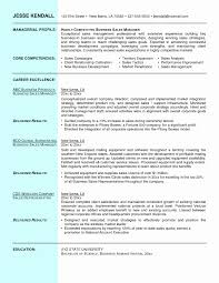Project Manager Core Competencies Resume Examples Valid 50 Awesome Sample Graphics