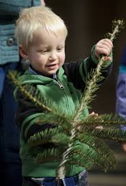 Christmas Tree Farm Lincoln Nebraska by State Christmas Tree Makes Its Journey From Farm To Capitol