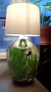 Lava Lamp Fish Tank Walmart by Turn Your Lava Lamp Into A Fishtank Diy Projects Pinterest