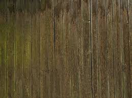 High Qualtity Wood Textures 9