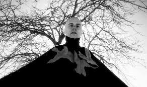 Smashing Pumpkins Album Covers by Billy Corgan Remembers U0027adore U0027 The Smashing Pumpkins U0027 Most