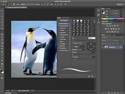 Best software for graphic designers – Red Back Design