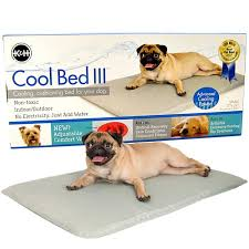 k h pet products k h cool bed lll gray cushion bed cooling dog beds