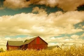 The Beauty Of Rural Photography [45 Photos] | Web Design Burn Scary Dairy Barn 2 By Puresoulphotography On Deviantart Art Prints Lovely Wall For Your Farmhouse Decor 14 Stunning Photographs That Might Inspire A Weekend Drive In Mayowood Stone Fall Wedding Minnesota Photographer Memory Montage Otography Blog Sarah Dan Wolcott Oregon Rustic Decor Red Photography Doors Photo 5x7 Signed Print The Briars Wedding Franklin Tn Phil Savage Charming Wisconsin Farmhouse Sugarland Upcoming Orchid Minisessions Atlanta Child