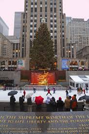 Rockefeller Christmas Tree Lighting 2014 Live by History Of The Rockefeller Center Christmas Tree Daily Mail Online