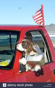 Dog Sitting In Pickup Truck At Pismo Beach With Owner And Flag On ... The 142000 Pickup Truck With 13 Miles Tops Vintage Car Auction 1996 Stewart And Stevenson 6x6 Truck Cars Trucks By Owner Dealing In Used Japanese Mini Trucks Ulmer Farm Service Llc New York Craigslist Cars For Sale By Owner Apiotravvyinfo 1995 Ford F 150 58 V8 1 Clean 12 Ton Pickp Phoenix And 2019 20 Upcoming Imgenes De Los Angeles Ca Orange Best Reviews 1920 Craigs List Sarasota Examples Forms Houston Amp Craigslist 3279987 Bunkyoinfo Tx On Portland Specs Models