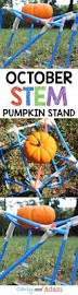 Rhinoceros Smashing Pumpkins Genius by The 25 Best Cd Stand Ideas On Pinterest Cd Art Recycled Cds