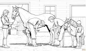Horse And Pony Coloring Page Free Printable Pages