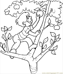 Coloring Pages Boy Page 14 Food Fruits Apples