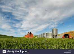 Red Barn And Grain Storage Silos, Palouse Region Of Eastern Stock ... Red Barn Washington Landscape Pictures Pinterest Barns Original Boeing Airplane Company Building Museum The The Manufacturing Plant Exterior Of A Red Barn In Palouse Farmland Spring Uniontown Ewan Area Usa Stock Photo Royalty And White Fence State Seattle Flight Interior Hip Roof Rural Pasture Land White Fence On Olympic Pensinula