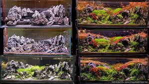 Setup Process Of 4ft Cave & Ridgeline Scape - YouTube How To Set Up An African Cichlid Tank Step By Guide Youtube Aquascaping The Art Of The Planted Aquarium 2013 Nano Pt1 Best 25 Ideas On Pinterest Httpwwwrebellcomimagesaquascaping 430 Best Freshwater Aqua Scape Images Aquascape Equipment Setup Ideas Cool Up 17 About Fish Process 4ft Cave Ridgeline Aquascape A Planted Tank Hidden Forest New Directly After Setting When Dreams Come True