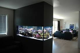 22 spectacular room dividers with modern aquarium wall