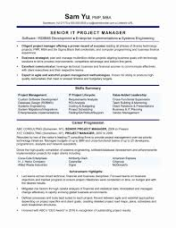 Healthcare Project Manager Resume Information Technology Examples At
