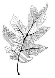 Coloring In The Lines Leaf ColoringColouring PagesAdult