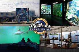 grand aquarium de malo grand aquarium de malo les parcs d attractions français
