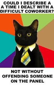 service cats service cats civilservicecat