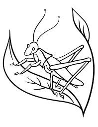 Free Grasshopper Coloring Page