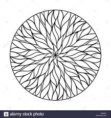 100 Natural Geometry Circular Ornament From Flowing Lines Vector Decor
