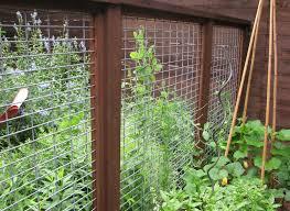 Vegetable Garden Fence Panels