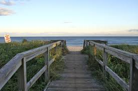 100 Fire Island Fair Harbor A Beginners Guide To Summer On