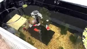 Horse Water Trough Bathtub by Trough Pond Youtube