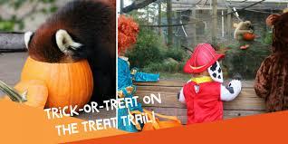 Bronx Zoo Halloween 2017 by Roger Williams Park Zoo