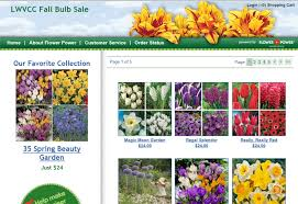 lwvcc fall flower bulb sale the league of voters of