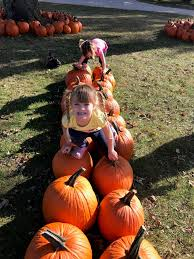 Flower Mound Pumpkin Patch Facebook by Northern Indiana Lakes Country Steuben County Steuben County
